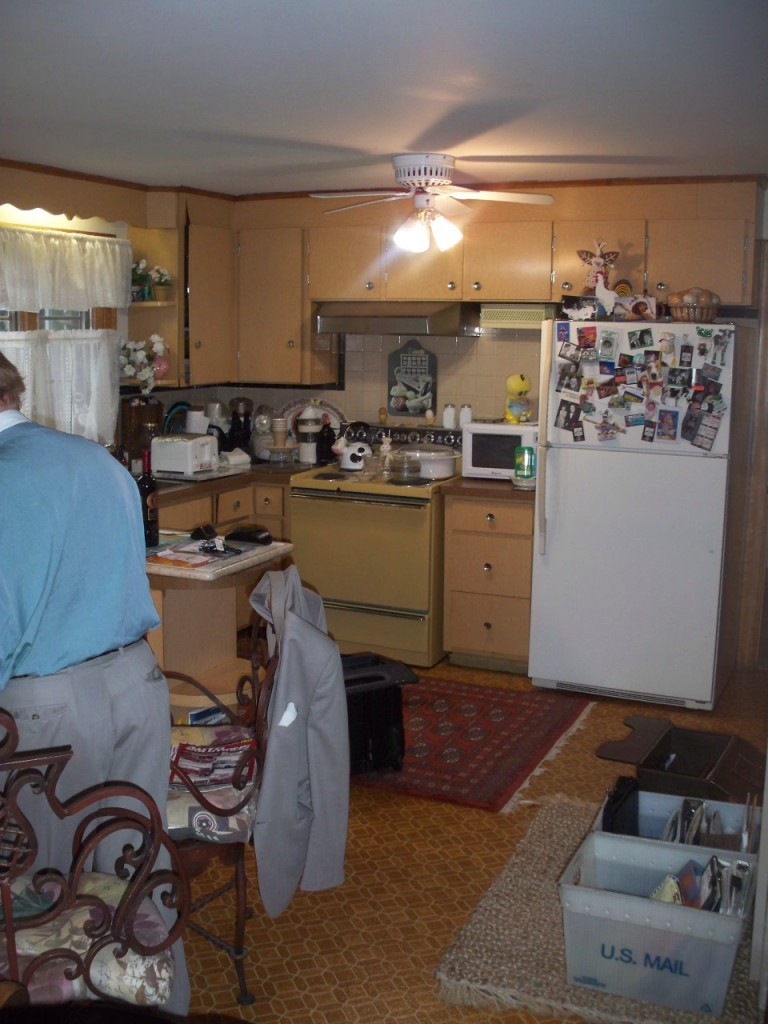 Whole house existing kitchen